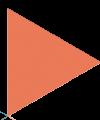 Pillentum Career Coaching Perth Orange Pointer