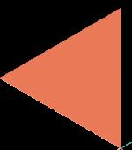 Pillentum Career Coaching Perth Orange Pointer reverse